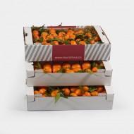 Box de Clémentines